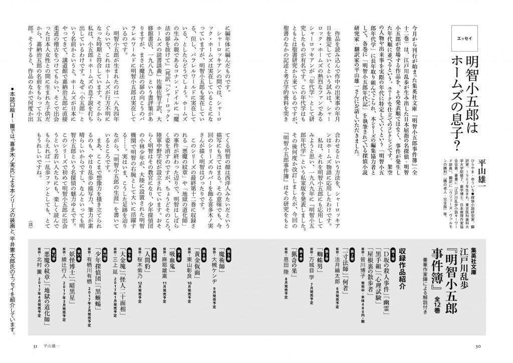 hirayama_essay